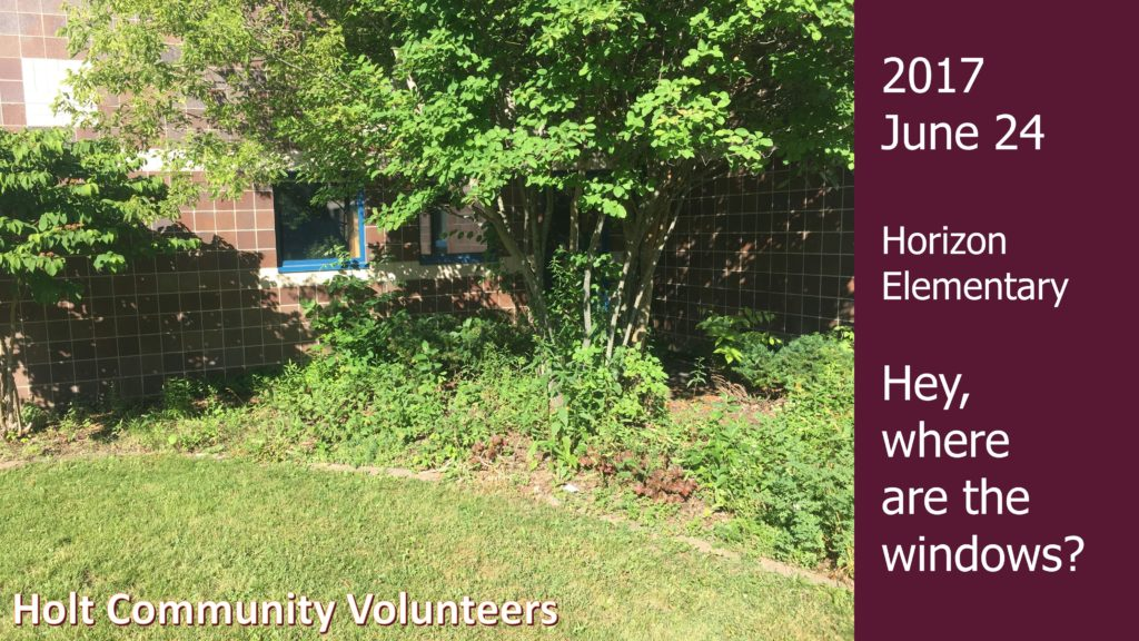 Holt Community Garden Club